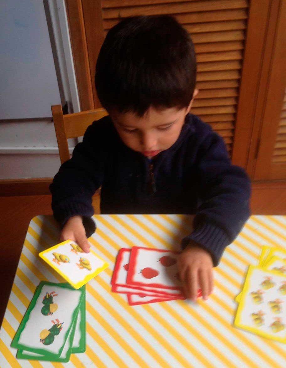 Proyecto A construir el Cerebro primera infancia